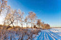 Sunset in winter field - PhotoDune Item for Sale