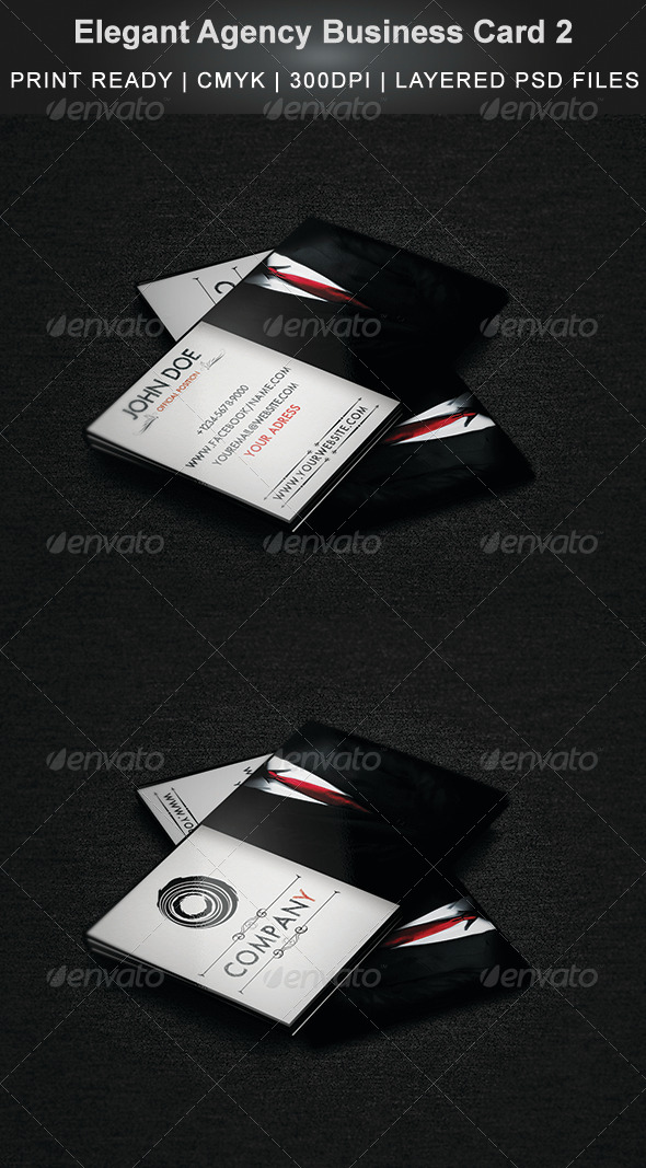 GraphicRiver Elegant Agency Business Card 2 4354691