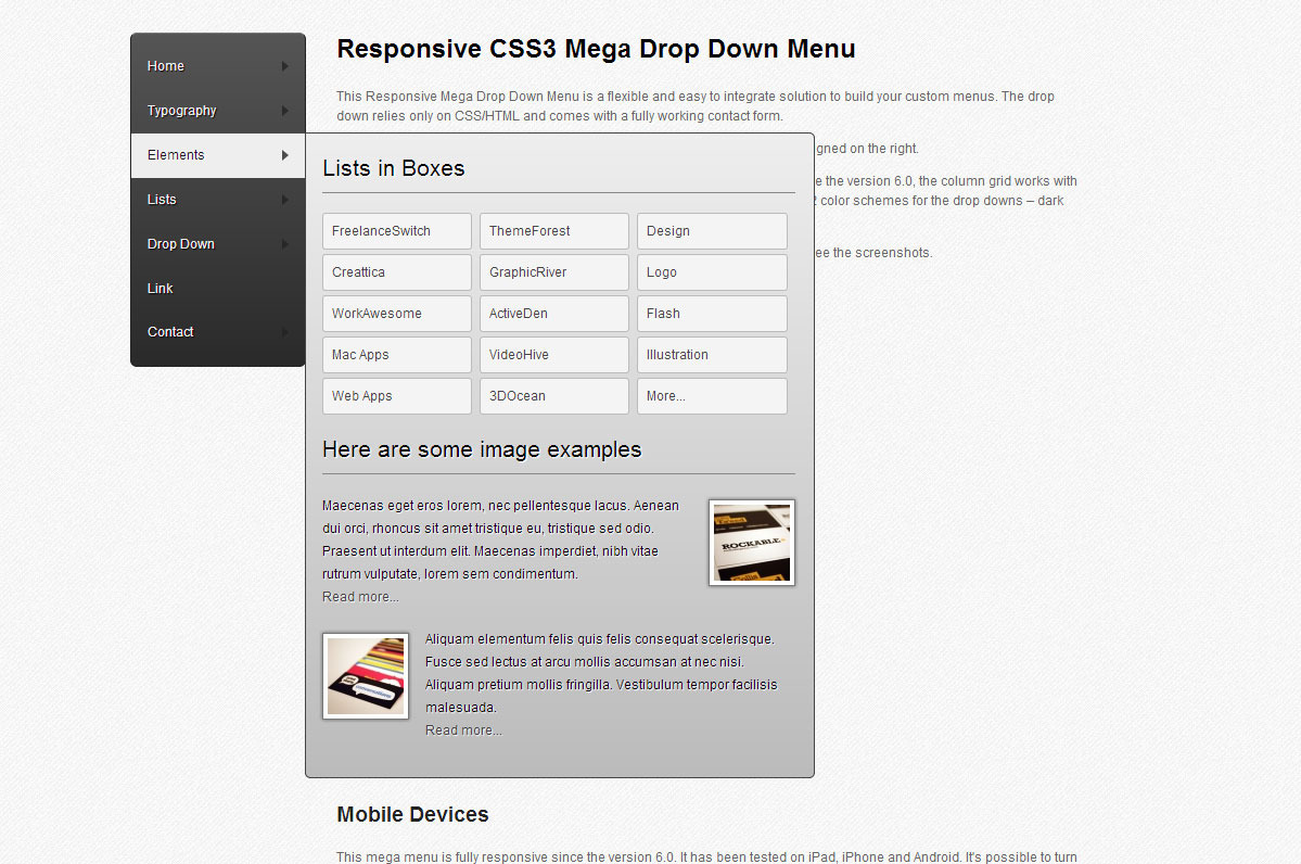 CSS3 Mega Drop Down Menu