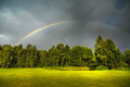 Rainbow above green trees - PhotoDune Item for Sale