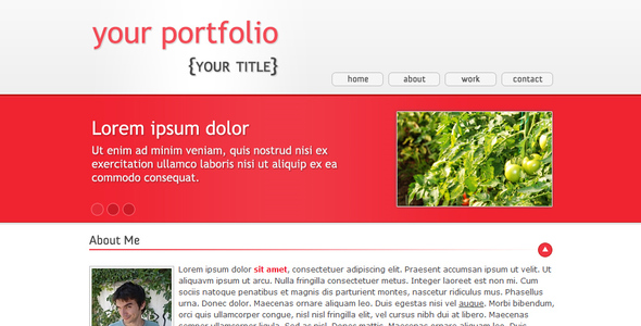 ThemeForest Domates One Page Portfolio 19992