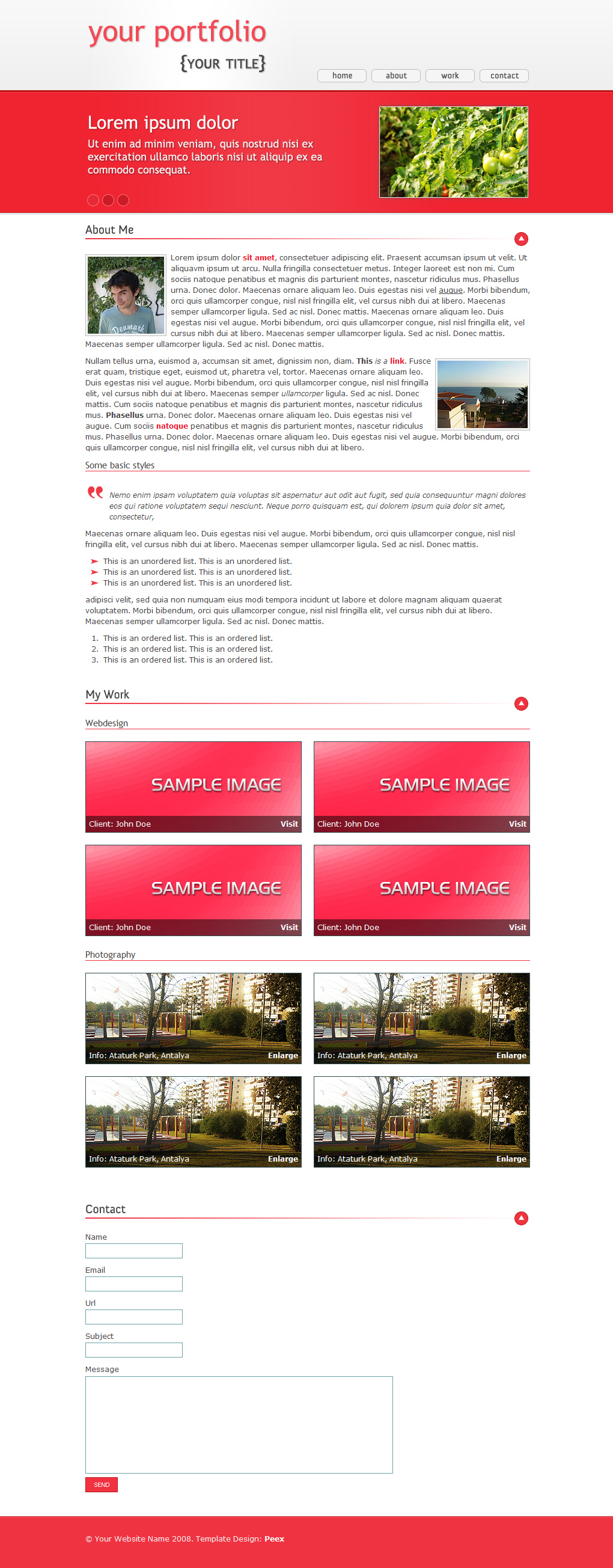 Domates - One Page Portfolio - This is a one page portfolio theme so here is the screenshot.