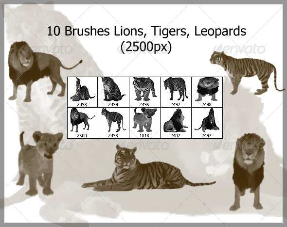 GraphicRiver 10 Brushes Lions Tigers Leopards 2500px 4365776