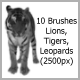 10 Brushes Lions Tigers Leopards (2500px) - GraphicRiver Item for Sale