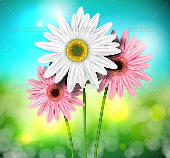 GraphicRiver Natural Background with Gerberas 4367818