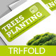 Tree Planting Tri-Fold Brochure - GraphicRiver Item for Sale