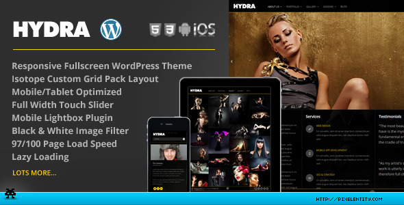 Hydra - Fullscreen Portfolio Grid WordPress Theme