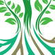 Roots Vector - GraphicRiver Item for Sale