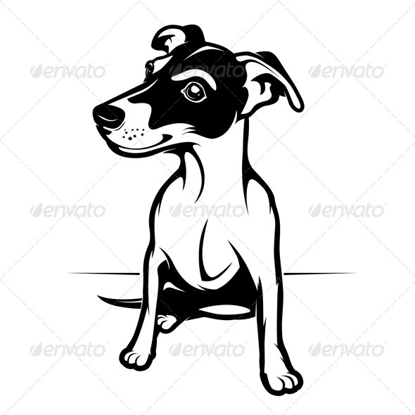 GraphicRiver Jack Russell Terrier 4380502