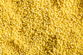 texture of millet - PhotoDune Item for Sale