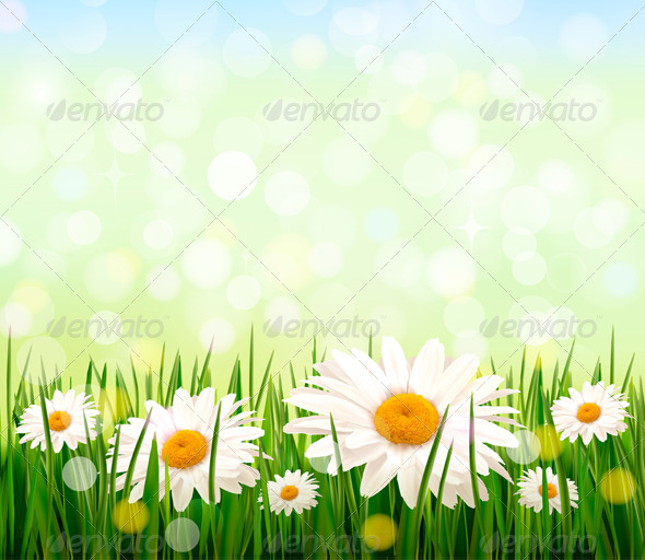 GraphicRiver Green Grass and Daisy Background 4397520