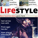 Lifestyle Newspaper - GraphicRiver Item for Sale