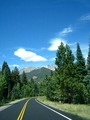 Driving Road Through Forest & Mountains - PhotoDune Item for Sale