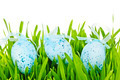 Easter eggs in green grass - PhotoDune Item for Sale