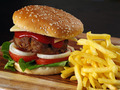 Juicy hamburger and fries - PhotoDune Item for Sale