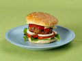 Hamburger - PhotoDune Item for Sale