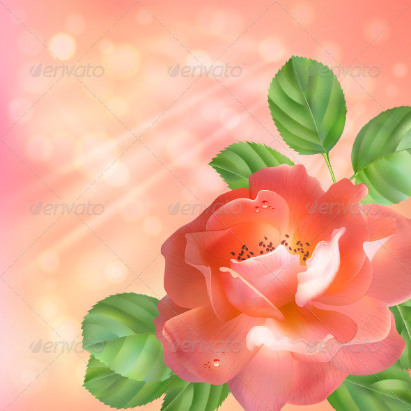 GraphicRiver Floral Background with Rose 4421056