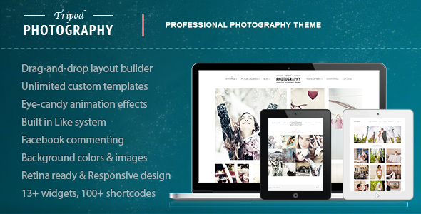 ThemeForest Tripod Professional WordPress Photography Theme 4438731
