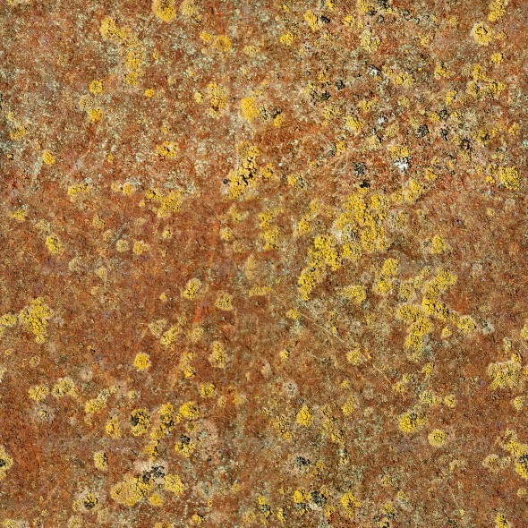 3DOcean Rusty Metal With Yellow Mold 4443434