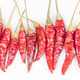 row of red peppers - PhotoDune Item for Sale
