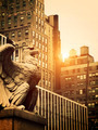 Stone Eagle in Manhattan - PhotoDune Item for Sale