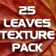 25 Leaves Texture Pack - GraphicRiver Item for Sale