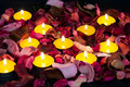 Candles and roses for Valentine - PhotoDune Item for Sale