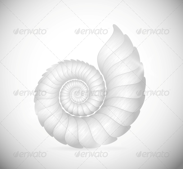 GraphicRiver The Seashell 4480607