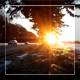 Forest Road And Sunset - VideoHive Item for Sale