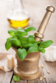 ingredients for pesto sauce - PhotoDune Item for Sale