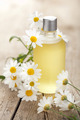 essential oil and camomile flowers - PhotoDune Item for Sale