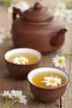 green tea with chamomile flowers - PhotoDune Item for Sale