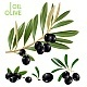Black Olives - GraphicRiver Item for Sale