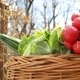 vegetable Basket - PhotoDune Item for Sale