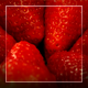 Strawberry, Rotation - VideoHive Item for Sale
