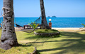Hammock strung between two palms on tropical island. - PhotoDune Item for Sale