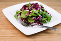 Fresh Salad in white plate - PhotoDune Item for Sale