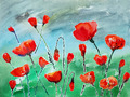 watercolor painting, poppies - PhotoDune Item for Sale