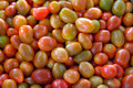 Small Cherry Tomatoes Background - PhotoDune Item for Sale