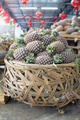 Pile of Pineapples in Big Basket - PhotoDune Item for Sale