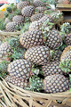 Pineapples Piled in Basket Closeup - PhotoDune Item for Sale