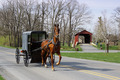 Amish Horse and Carriage - PhotoDune Item for Sale