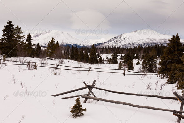 Scenic Yukon Canada winter mountains ranch fence - Stock Photo - Images