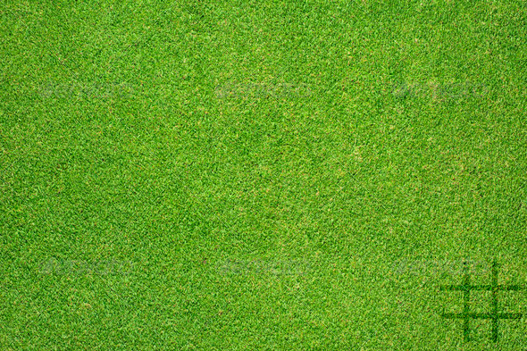 Holder icon on green grass texture and background - Stock Photo - Images