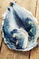 fresh dorada fish - PhotoDune Item for Sale
