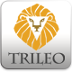 TriLeo Logo Template - GraphicRiver Item for Sale