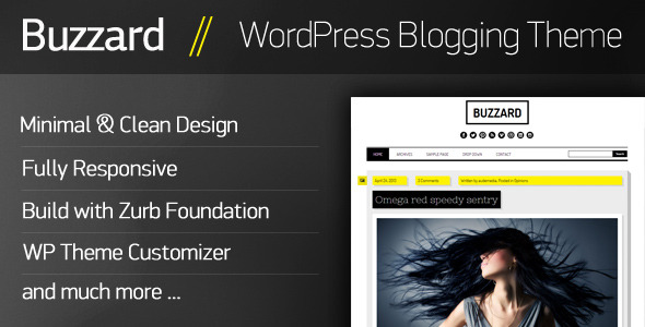 Buzzard - WordPress Responsive Blogging Theme