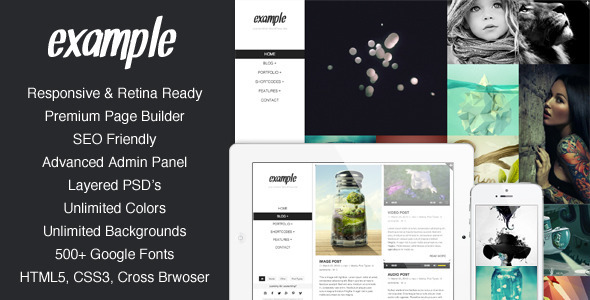 ThemeForest Example Responsive & Retina Portfolio WP Theme 4599565