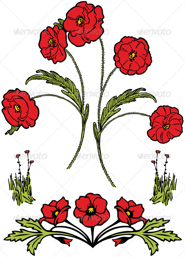 GraphicRiver Poppies 4600739