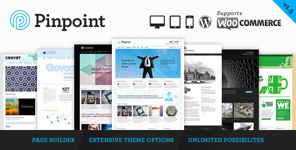 Pinpoint - Responsive Multi-Purpose WP Theme - Business Corporate